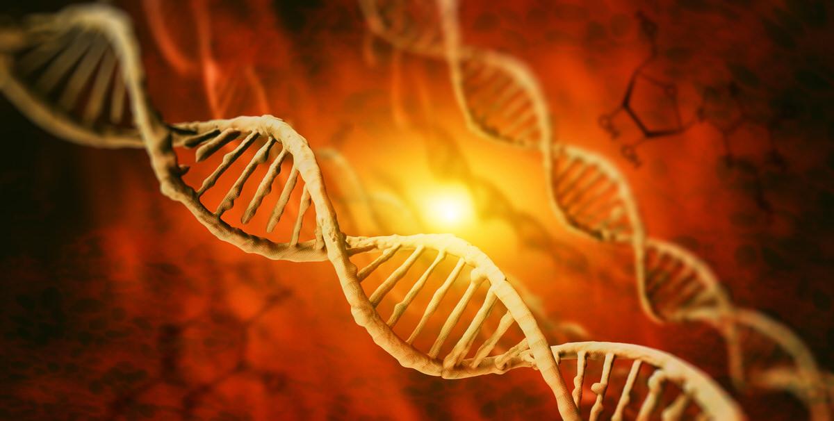 遺伝子ETF比較【ARKG/PBE/IDNA/GNOM】おすすめ米国ETF