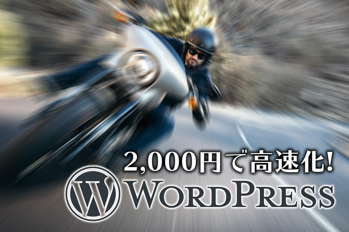 誰でも簡単プラグインなし!ココナラ「WordPress 高速化」お試しプラン体験レポート